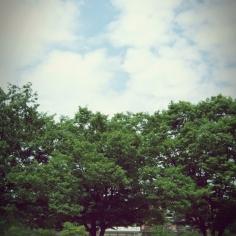 7월의 한 여름